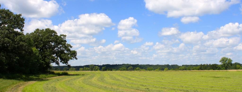 Prairie Oaks 1